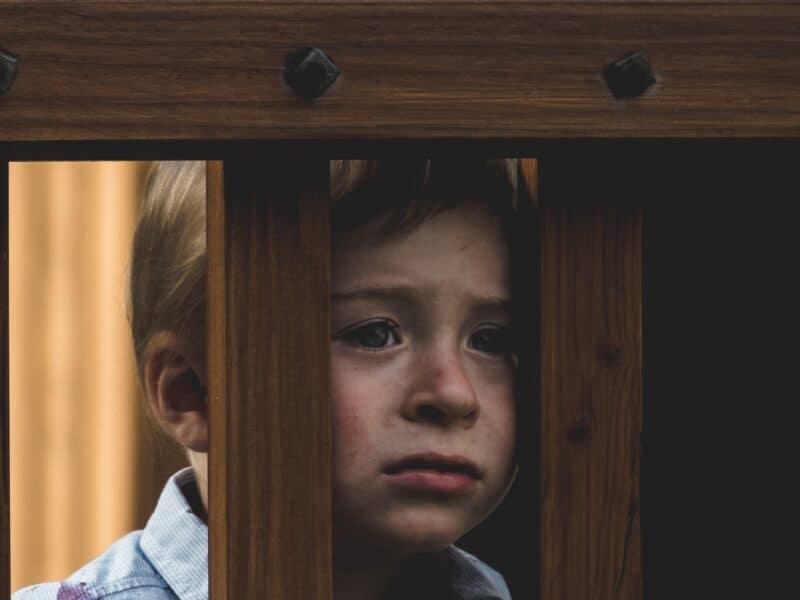 Jak PiS niszczy polskie rodziny od początku rządów Krzysztof Gonciarz